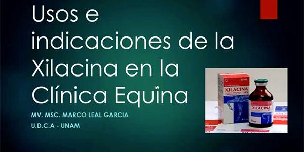 Xilacina